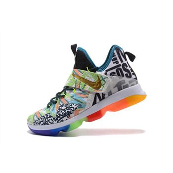 21ed53a55843 Nike LeBron 14 Colorful Men s Basketball Shoes Free Shipping